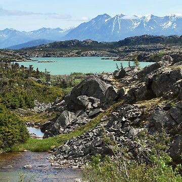 Chilkoot Pass Yukon by probono