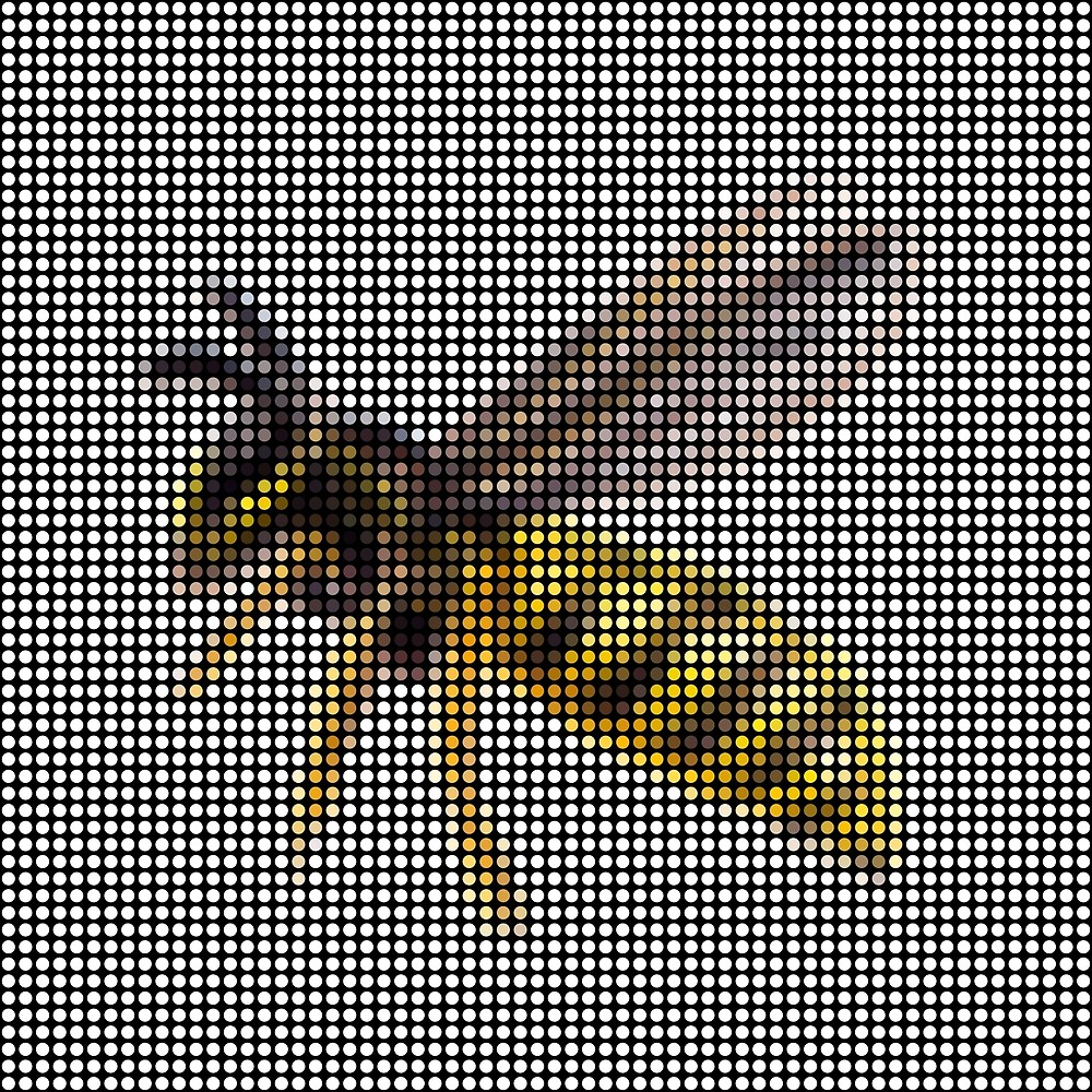 Wasp by Lars Furtwaengler