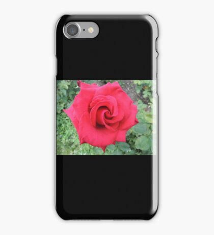 Could Be Velvet iPhone Case/Skin