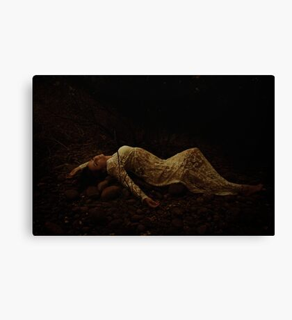 The girl on the rocks Canvas Print