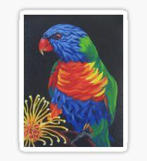 Rainbow Lorikeet #3 Sticker