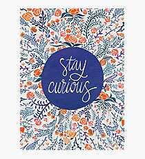 Stay Curious – Navy & Coral Photographic Print