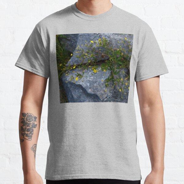 Tormentil, Dun Aengus, Inishmore, Aran Islands Classic T-Shirt