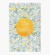 Stay Curious – Yellow & Green Photographic Print