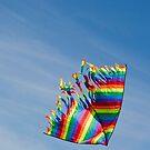 Let's go fly a kite by Karen Stevenson