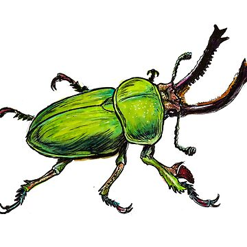 Green Stag Beetle  by jasoncastillo