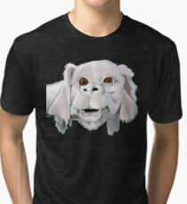 Falkor - Neverending Story Tri-blend T-Shirt