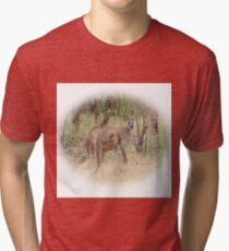 Kangaroos in the Park Tri-blend T-Shirt