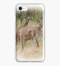 Kangaroos in the Park iPhone Case/Skin