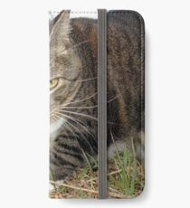 Lucy Lawns iPhone Wallet/Case/Skin