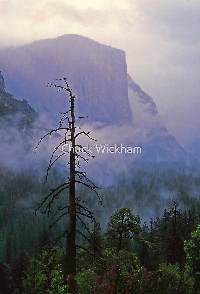 EL CAPITAN IN THE MIST by Chuck Wickham