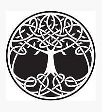 Celtic Tree of Life Photographic Print