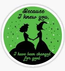 Because I Knew You, I've Been Changed For Good. Sticker