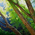 Apex Summer Light by Heidi Schwandt Garner