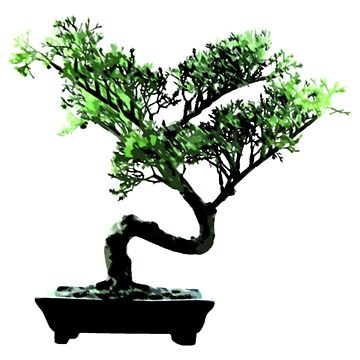 Bonsai by JohnLucke