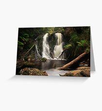 Hogarth Falls - Strahan, Tasmania Greeting Card