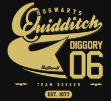 Cedric Diggory - Quidditch T-shirt (Dirty Version) | Unisex T-Shirt