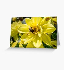 Nectar Greeting Card