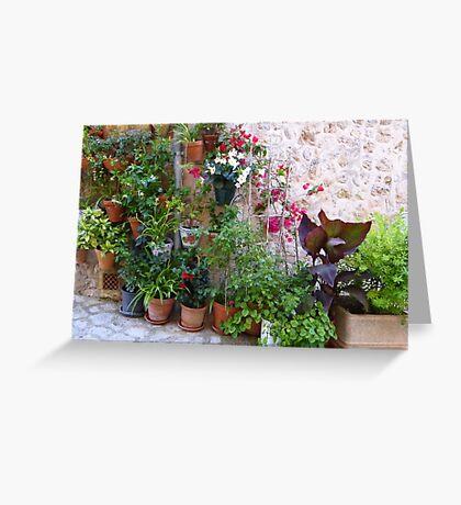 The Corner Plants.....................................Majorca Greeting Card