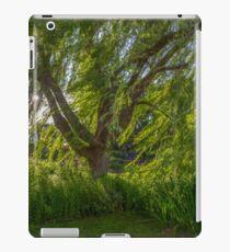 Windy Willow iPad Case/Skin
