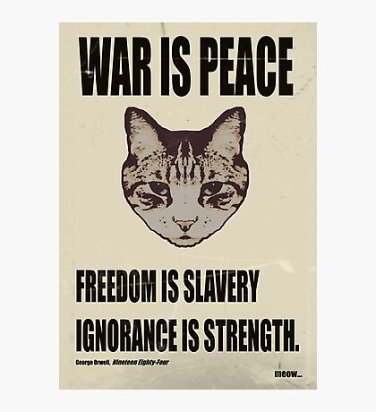 Orwellian Cat Says War Is Peace Photographic Print