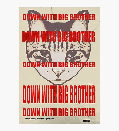 Orwellian Cat: Down With Big Brother Photographic Print