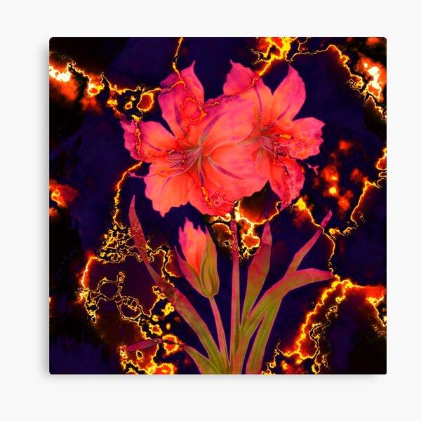 luminous amaryllis Canvas Print