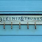 Bikinis And Trunks Hanger by Cynthia48