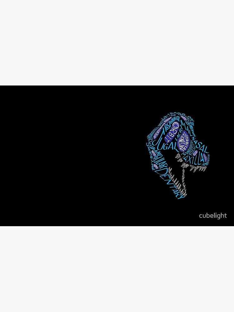 Color Calligram Tyrannosaur Skull by cubelight
