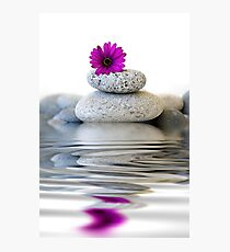 Balance and Harmony Photographic Print