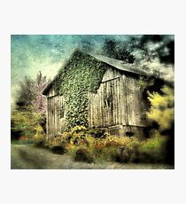 The Wonderville Barn Photographic Print