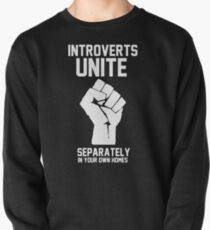 Introverts unite separately in your own homes Pullover