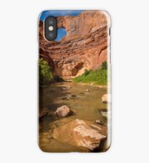 Stevens Arch - Escalante River - Grand Staircase - Utah iPhone Case/Skin