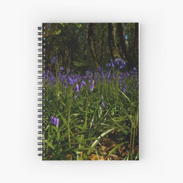 Bluebells in Prehen Woods Spiral Notebook