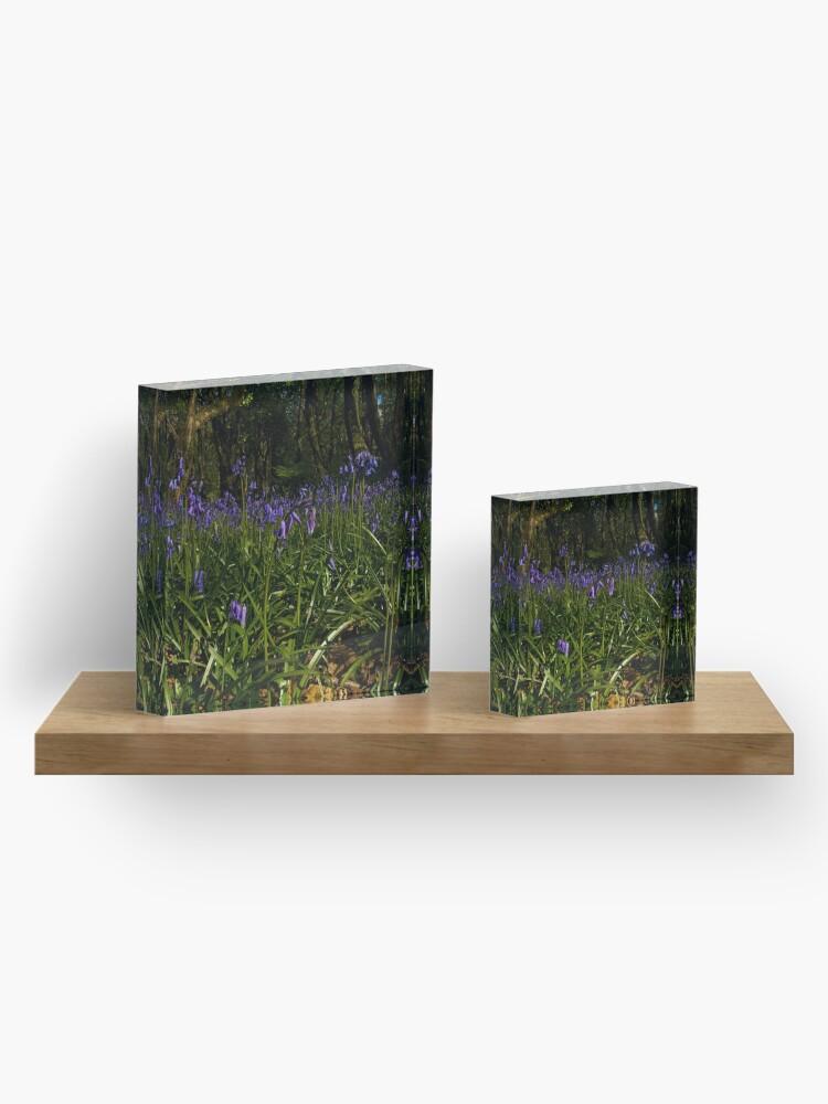 Alternate view of Bluebells in Prehen Woods Acrylic Block