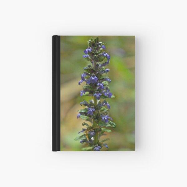 Bugleherb - Burntollet Woods Hardcover Journal