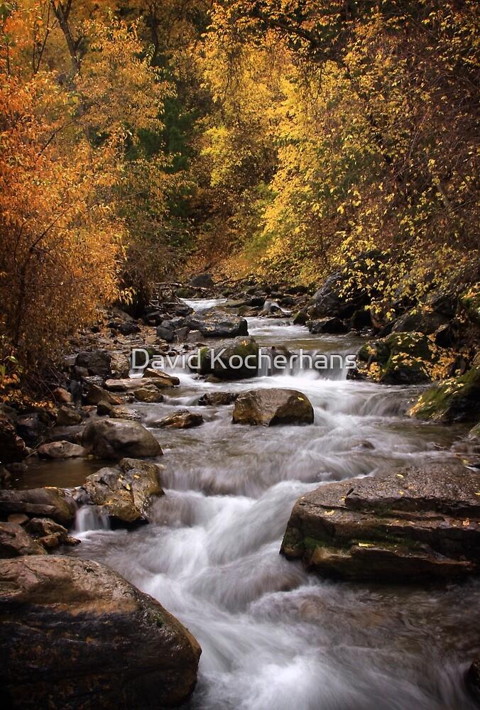 Autumn Stream 3 by David Kocherhans