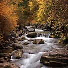 Autumn Stream 3 by David Kocherhans