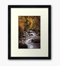 Autumn Stream 3 Framed Print