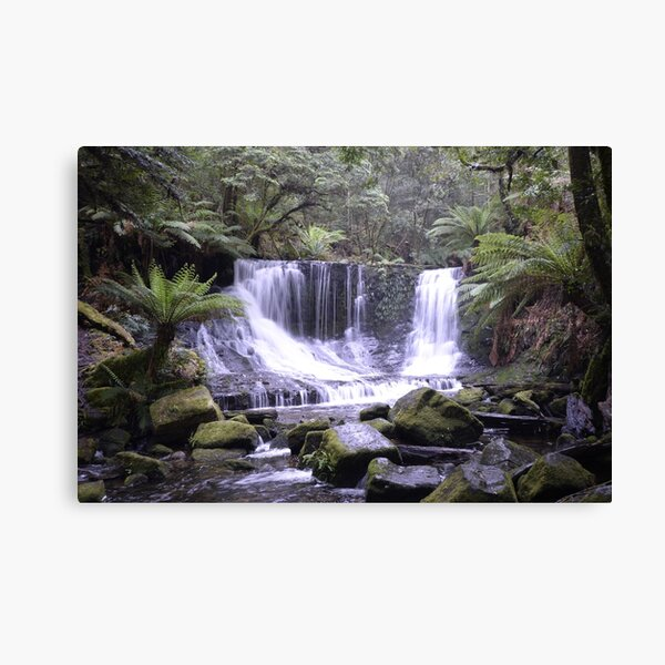 Horseshoe Falls - Mt Field National Park - Tasmania Canvas Print
