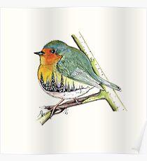 oiseau paysage Poster