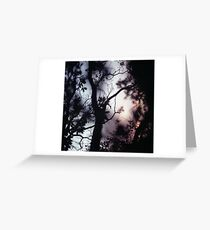 Tree branches on summer evening  in Spain square medium format film analogue photographer Greeting Card