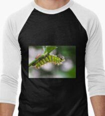 Rothschildia Caterpillar T-Shirt