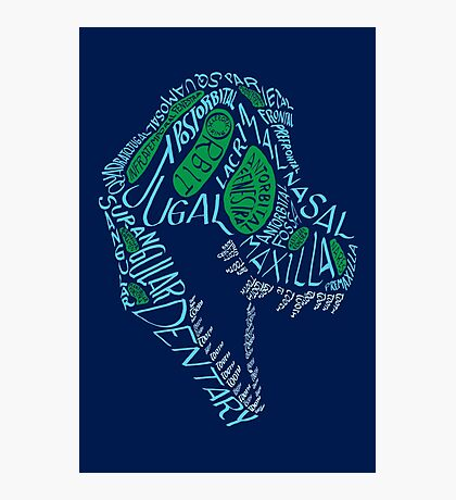 Analogous Colors Calligram Tyrannosaur Skull Photographic Print