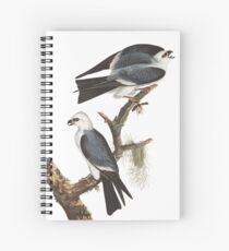 Mississippi Kite - John James Audubon Spiral Notebook