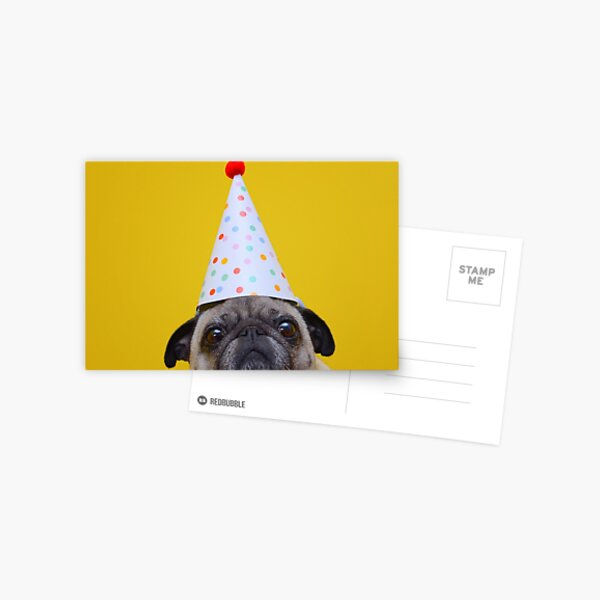 Its My Birthday  Postcard