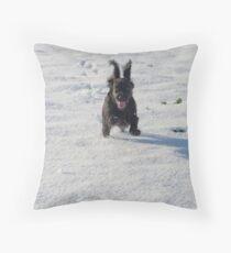 Black cocker spaniel in snow Throw Pillow