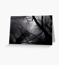 Tree branches in silhouette against winter sky black and white silver gelatin 645 medium format film analog photo Greeting Card