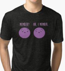 Mitglied Beeren: Mitglied Berry Southpark Fanart Print Vintage T-Shirt
