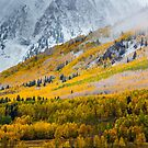 A Fall Hillside by John  De Bord Photography